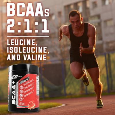 EC Sports Vegan BCAA Powder 5000mg - 2:1:1 Branched Chain Amino Acid with L-Citrulline, Betaine, Electrolytes – 365 gram – BCAA Supplement – Post Workout Muscle Recovery Drink – Candy Watermelon
